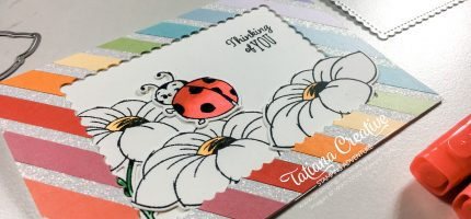 Rainbow Two In One Lady Bug Cards