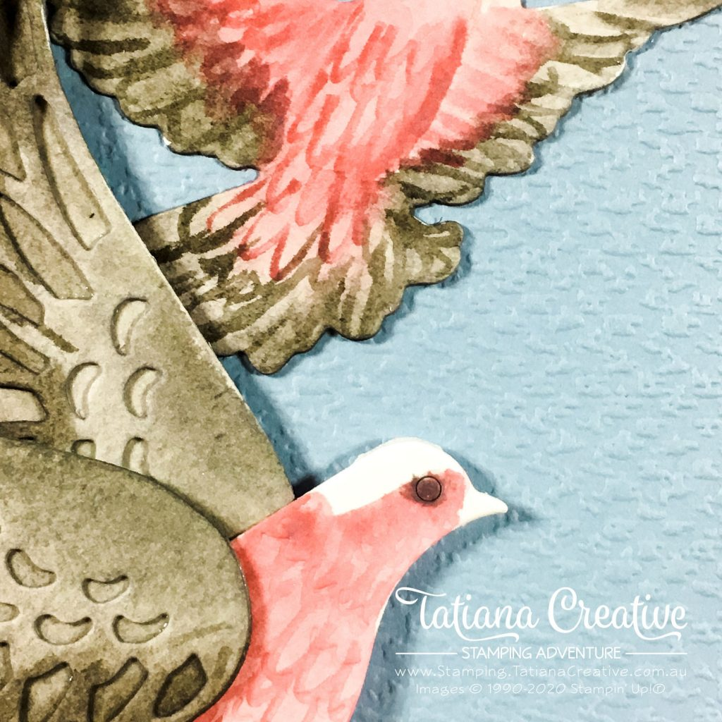 Tatiana Creative Stamping Adventure - Galah Peace Card using Dove of Hope bundle from Stampin' Up!®