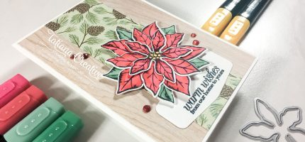 Poinsettia Petals Christmas Card