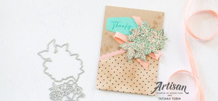 Sale-A-Bration Sampler with Video